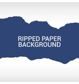 ripped paper pieces background vector image