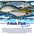 poster for fresh fish or seafood market vector image