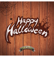Happy Halloween with spider on wood background vector image