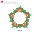 Tonga Lei or Tongan Heilala Flowers Garland vector image vector image