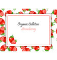 square label strawberry jam or juice vector image