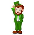cartoon funny leprechaun vector image