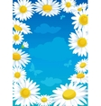 daisies frame vector image