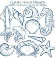 Hand Drawn Sealife Set vector image