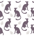 seamless cat silhouette vector image vector image