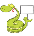 Snake Cartoon Character Holding Up A Blank Sign vector image
