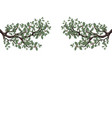 two green branches of oak with acorns on both vector image