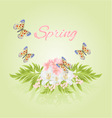 Spring cherry blossom and jasmine with butterflies vector image