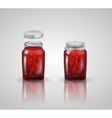 strawberry jam on white background vector image
