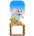 Cute elephant cartoon with blank board vector image