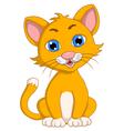 cute cat cartoon expression vector image