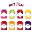 Set of summer jams vector image