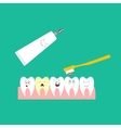 Children Teeth and toothpaste vector image