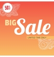 Big sale bright banner vector image vector image