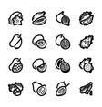 exotic fruits icons - mango kiwi and starfruit vector image