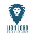 Company logo design Lions head template logotype vector image
