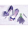 High heels shoes vector image