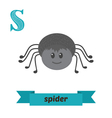Spider S letter Cute children animal alphabet in vector image