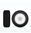 Realistic Winter Tire vector image