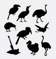 bird poultry silhouette vector image