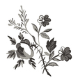 Meadow flower and leaf bouquet isolated on white vector image