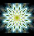 fantasy flower mandala closeup in fractal vector image