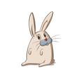 bunny character vector image