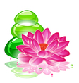 spa background with a lotus flower and transparent vector image vector image