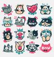cartoon cat heads cute animal vector image