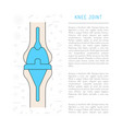 medical knee joint vector image