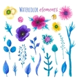 Watercolor blossom floral set vector image