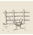 brood-hen at the farm vector image