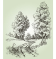 A path in the forest vector image