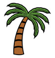 isolated palm tree vector image