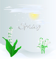 Spring lily of the valley and snowdrops vector image
