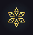 star prism gold logo vector image