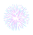 A firework vector image
