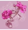Beautiful Seamless Rose Background vector image vector image