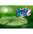 A blue butterfly and the pink flower at the pond vector image