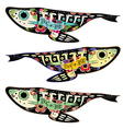 Colorfull fishes vector image
