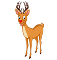 Santa Rudolph Reindeer vector image