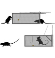 Humane rat trap vector image vector image