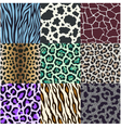 Animal skin texture set vector image