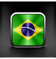 Brazil icon flag national travel icon country vector image