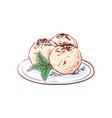 gelato ice cream isolated icon vector image