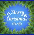 christmas branches decor vector image