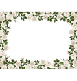 square border of white roses vector image