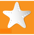 starfish orange background vector image vector image