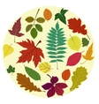 leaves set vector image