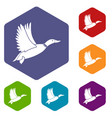 duck icons set vector image